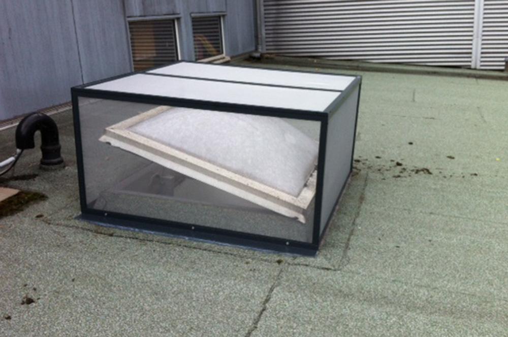 Insektenschutz - Zweckmäßig auf dem Dach